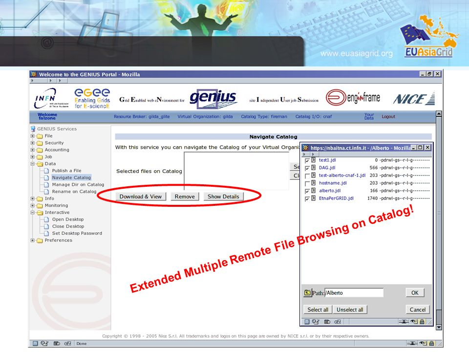23 Extended Multiple Remote File Browsing on Catalog!