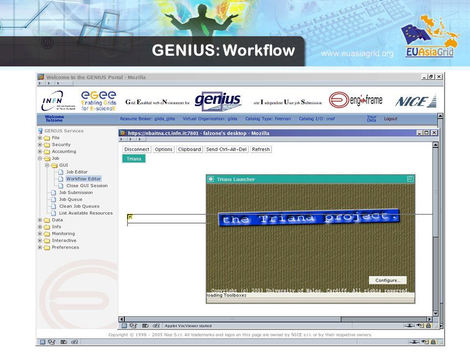 24 GENIUS: Workflow