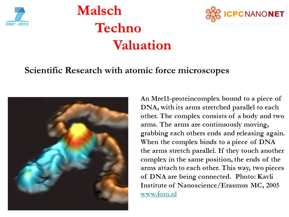Malsch Techno Techno Valuation Valuation An Mre11-proteincomplex bound to a piece of DNA, with its arms stretched parallel to each other.