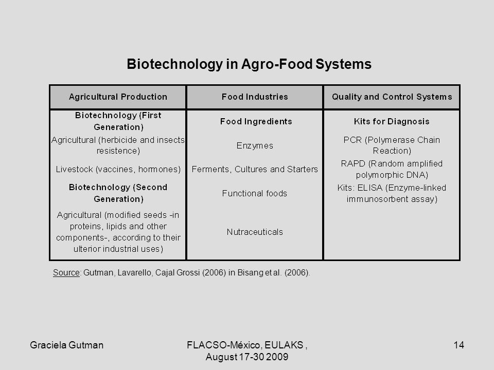 Graciela GutmanFLACSO-México, EULAKS, August 17-30 2009 14 Biotechnology in Agro-Food Systems Source: Gutman, Lavarello, Cajal Grossi (2006) in Bisang et al.