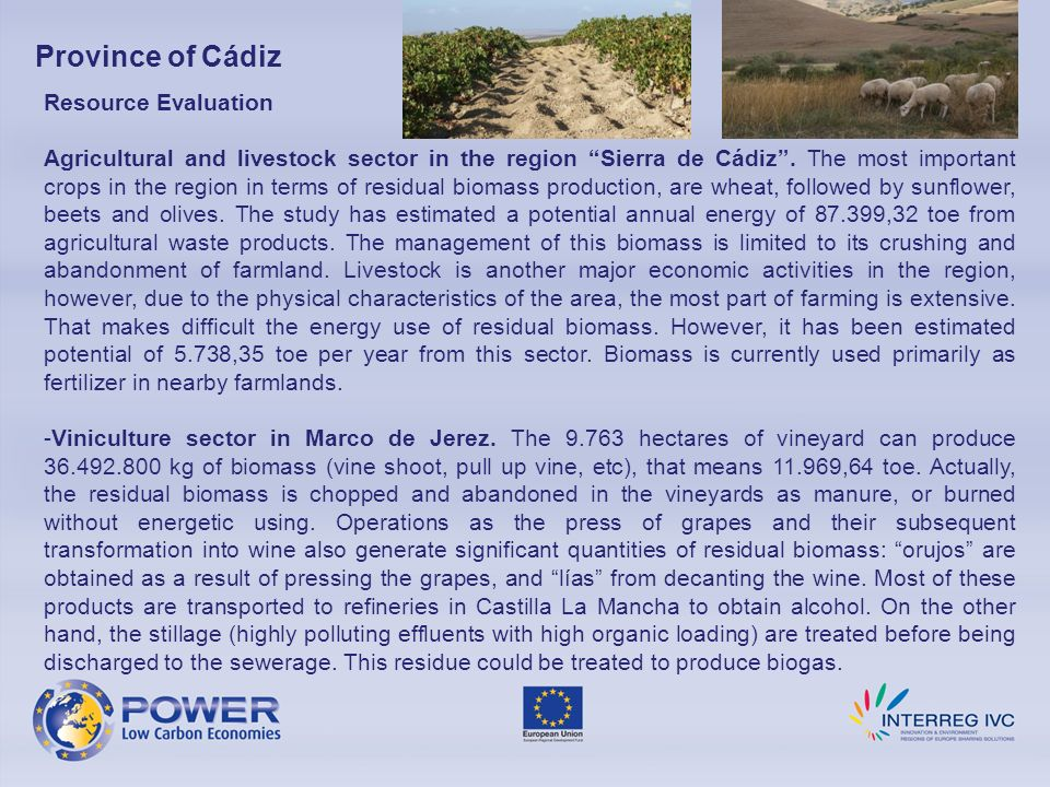 Province of Cádiz Resource Evaluation Agricultural and livestock sector in the region Sierra de Cádiz. The most important crops in the region in terms