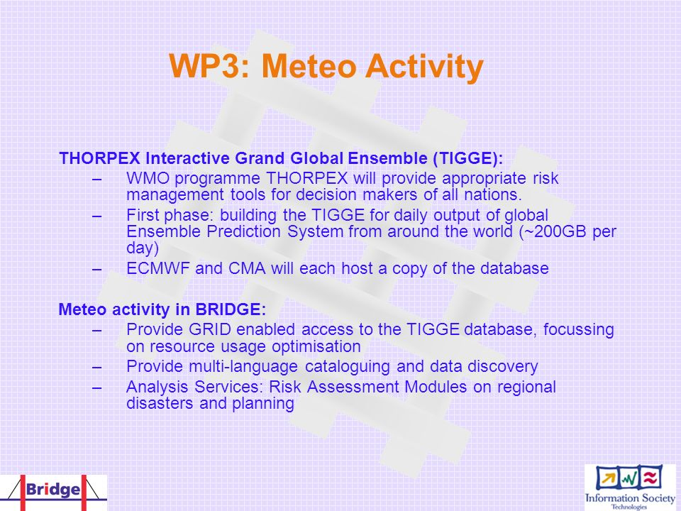 WP3: Meteo Activity THORPEX Interactive Grand Global Ensemble (TIGGE): –WMO programme THORPEX will provide appropriate risk management tools for decis