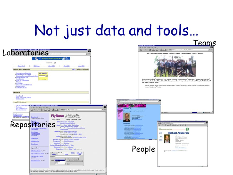 Not just data and tools… Laboratories Teams Repositories People