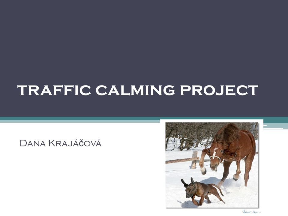 traffic calming project Dana Krajá č ová