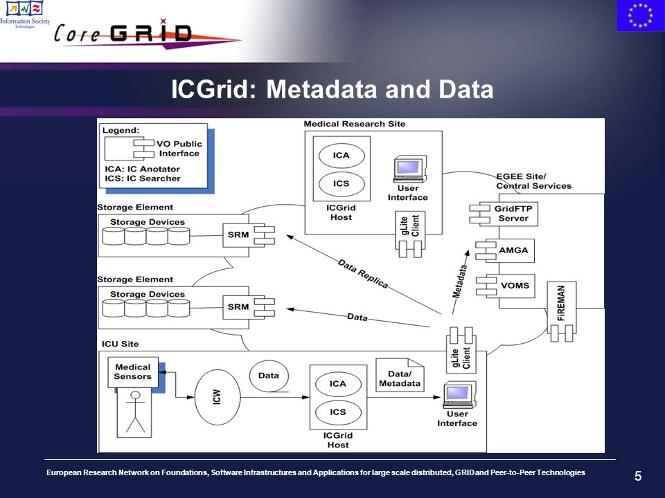 European Research Network on Foundations, Software Infrastructures and Applications for large scale distributed, GRID and Peer-to-Peer Technologies 5 ICGrid: Metadata and Data