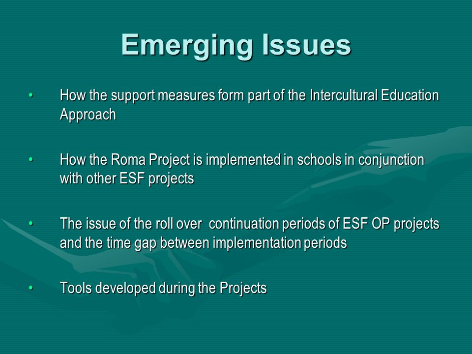 Emerging Issues How the support measures form part of the Intercultural Education ApproachHow the support measures form part of the Intercultural Educ