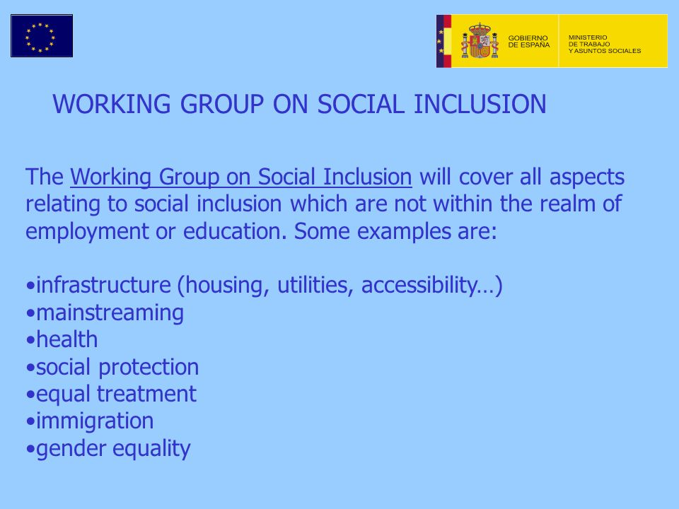 WORKING GROUP ON SOCIAL INCLUSION The Working Group on Social Inclusion will cover all aspects relating to social inclusion which are not within the realm of employment or education.
