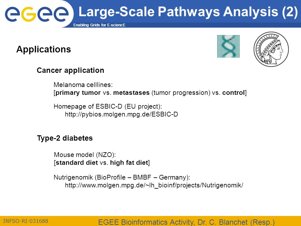 Enabling Grids for E-sciencE INFSO-RI-031688 EGEE Bioinformatics Activity, Dr. C. Blanchet (Resp.) Cancer application Type-2 diabetes Melanoma celllin