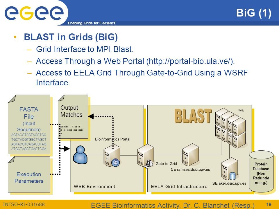 Enabling Grids for E-sciencE INFSO-RI-031688 EGEE Bioinformatics Activity, Dr. C. Blanchet (Resp.) 19 BiG (1) BLAST in Grids (BiG) –Grid Interface to