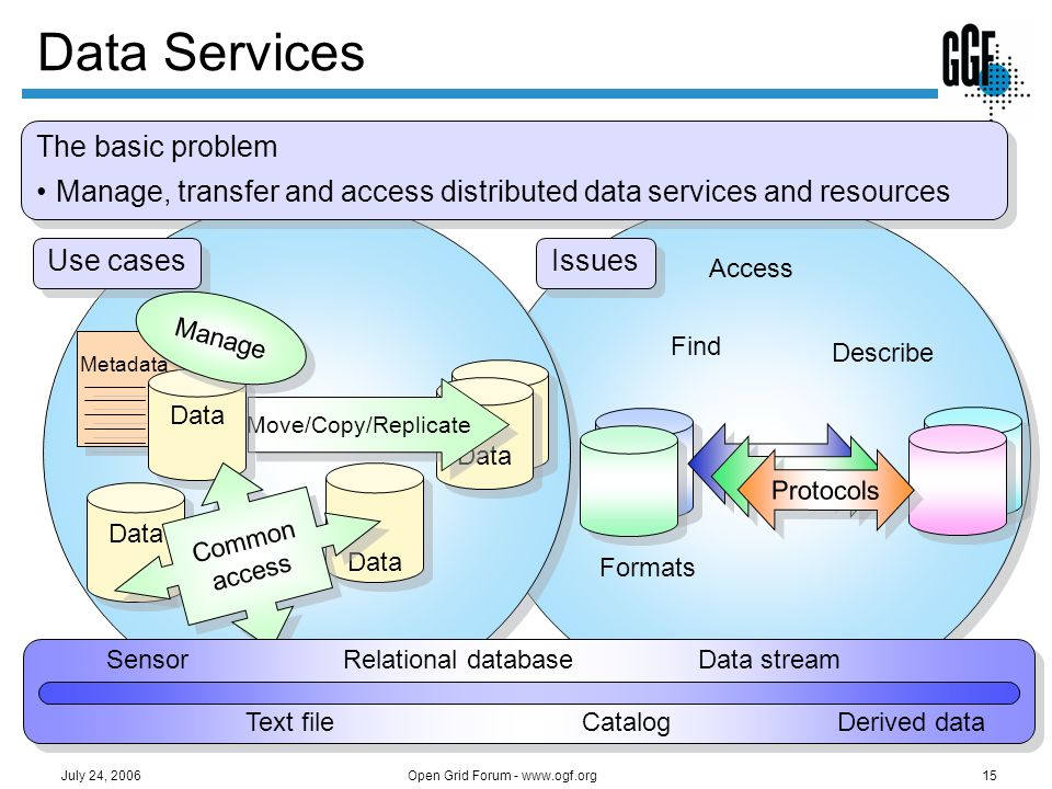 Open Grid Forum - www.ogf.org15 July 24, 2006 Issues Find Describe Access Data Formats Protocols Use cases Data Move/Copy/Replicate Metadata Data Mana