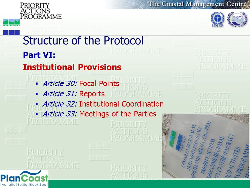 Structure of the Protocol Part VI: Institutional Provisions Article 30: Focal Points Article 31: Reports Article 32: Institutional Coordination Articl
