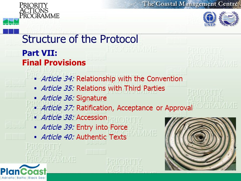 Structure of the Protocol Part VII: Final Provisions Article 34: Relationship with the Convention Article 35: Relations with Third Parties Article 36: