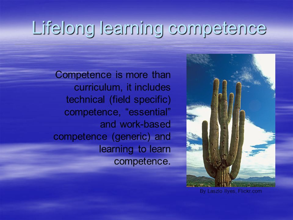 Lifelong learning competence Lifelong learning competence Competence is more than curriculum, it includes technical (field specific) competence, essen