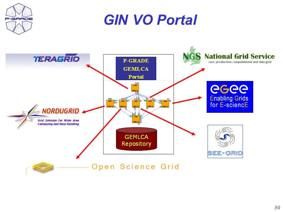 30 GIN VO Portal