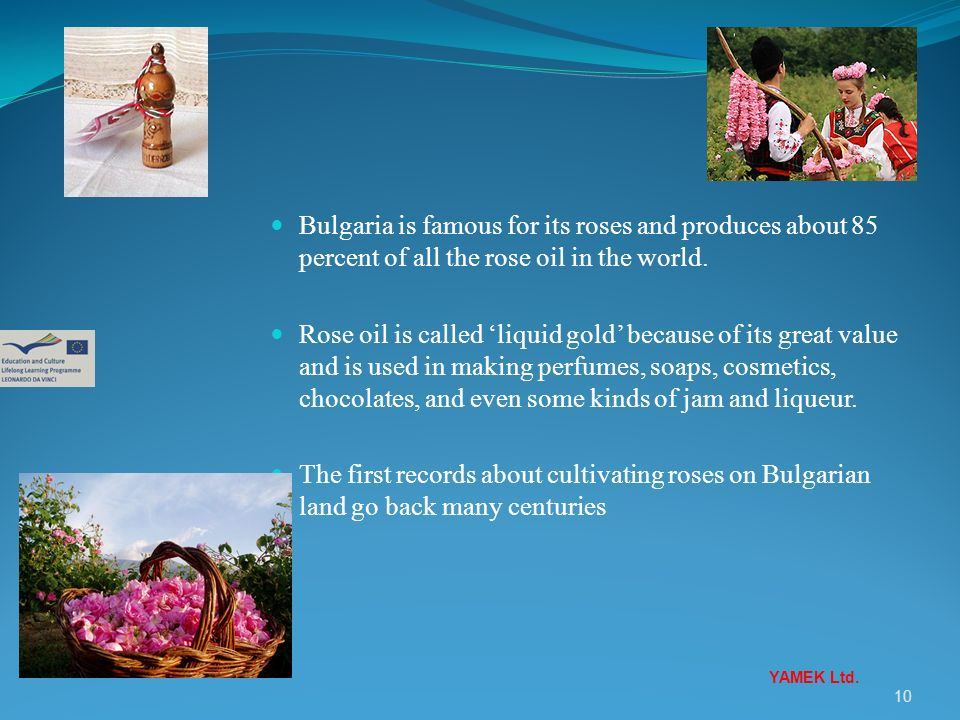 10 Bulgaria is famous for its roses and produces about 85 percent of all the rose oil in the world. Rose oil is called liquid gold because of its grea