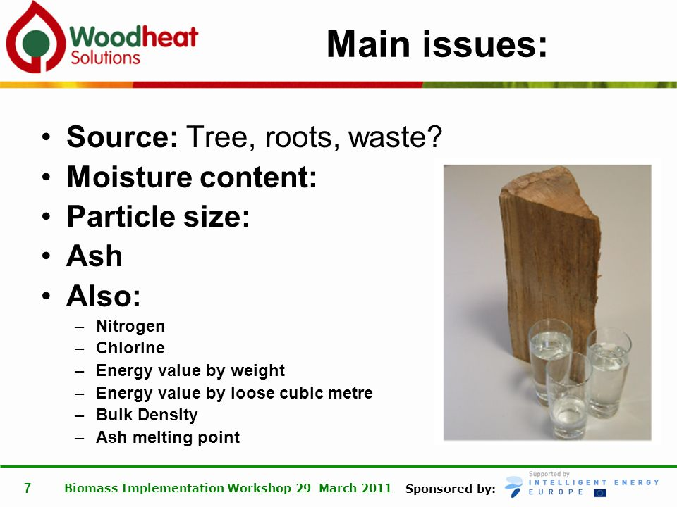 Sponsored by: Biomass Implementation Workshop 29 March 2011 8 Main points: 1.