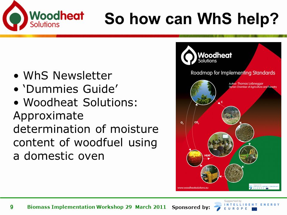Sponsored by: Biomass Implementation Workshop 29 March 2011 10 Thank you www.woodheatsolutions.eu