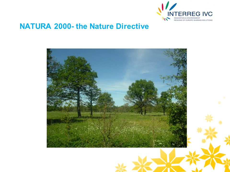NATURA 2000- the Nature Directive