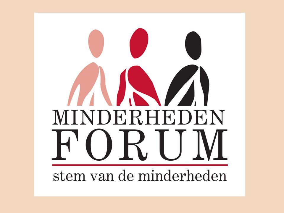 Forum for Ethnic-Cultural Minorities: improvements -Not respresentative -Not enough political support -Negative perception