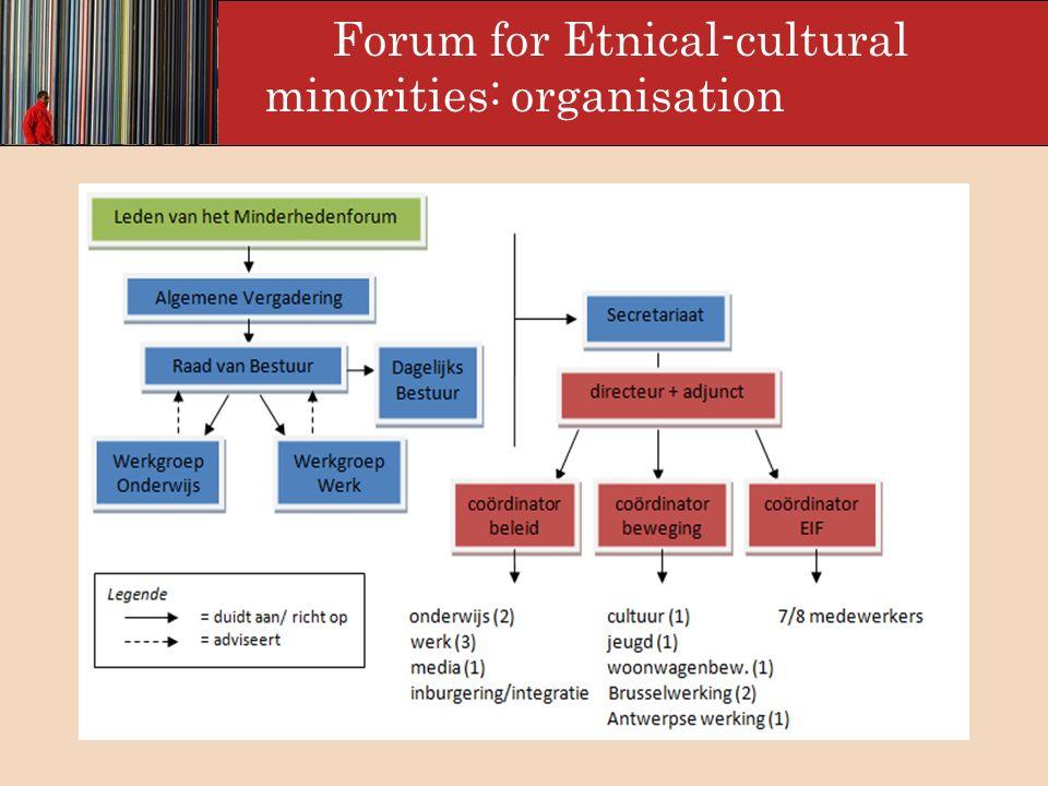 Forum for Ethnic-Cultural Minorities: strategies