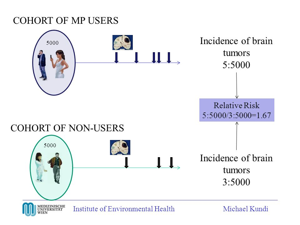 Institute of Environmental HealthMichael Kundi COHORT OF MP USERS COHORT OF NON-USERS Incidence of brain tumors 5:5000 5000 Incidence of brain tumors