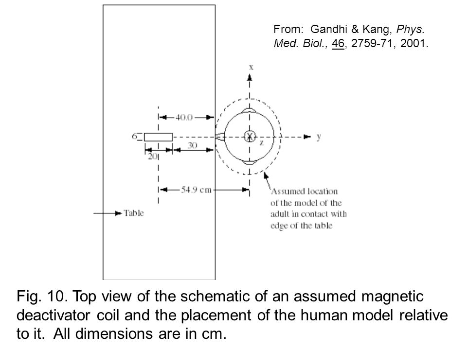 Fig. 10. Top view of the schematic of an assumed magnetic deactivator coil and the placement of the human model relative to it. All dimensions are in