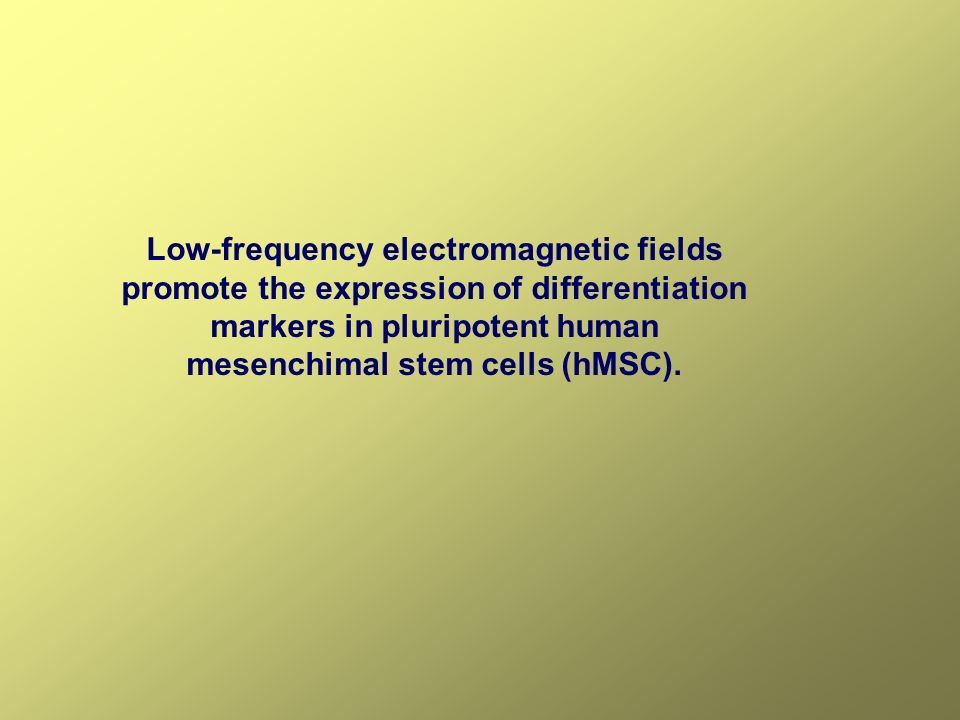 Low-frequency electromagnetic fields promote the expression of differentiation markers in pluripotent human mesenchimal stem cells (hMSC).