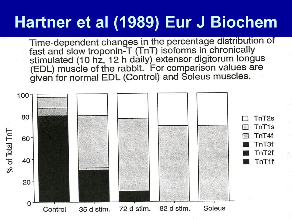 Hartner et al (1989) Eur J Biochem