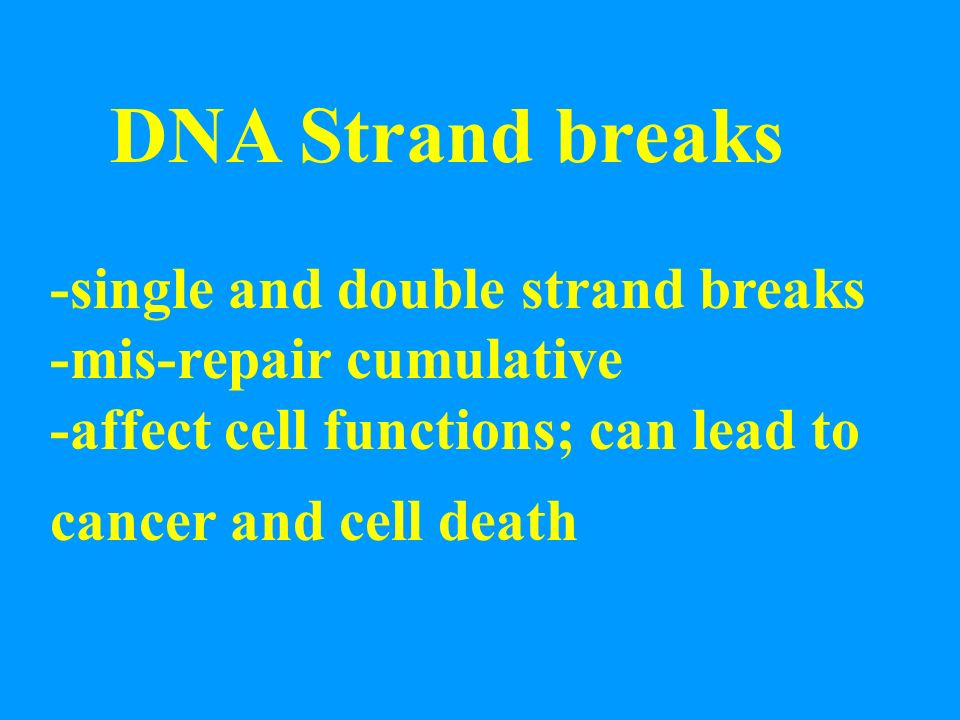 DNA Strand breaks -single and double strand breaks -mis-repair cumulative -affect cell functions; can lead to cancer and cell death