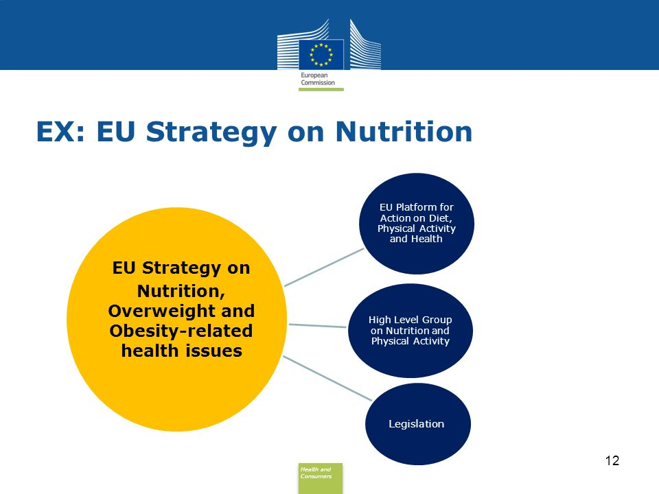 Health and Consumers Health and Consumers EU Platform for Action on Diet, Physical Activity and Health High Level Group on Nutrition and Physical Activity Legislation EU Strategy on Nutrition, Overweight and Obesity-related health issues 12 EX: EU Strategy on Nutrition
