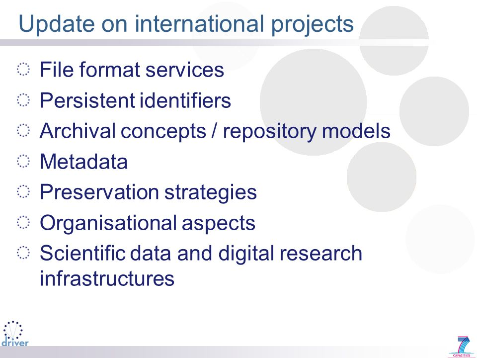 Update on international projects File format services Persistent identifiers Archival concepts / repository models Metadata Preservation strategies Or