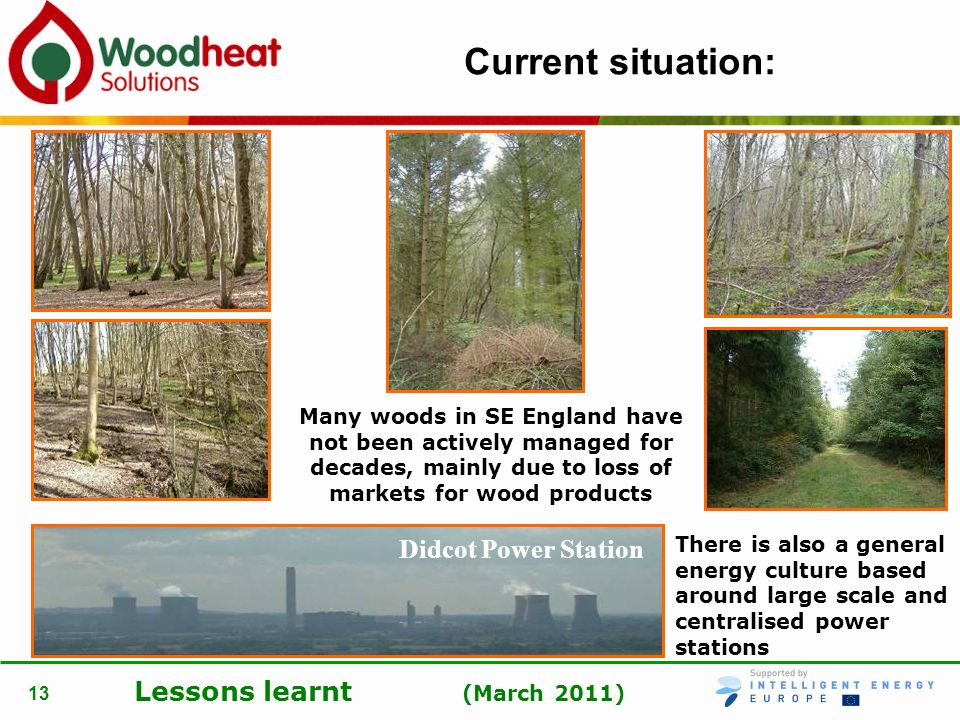Lessons learnt (March 2011) 13 Current situation: Didcot Power Station Many woods in SE England have not been actively managed for decades, mainly due