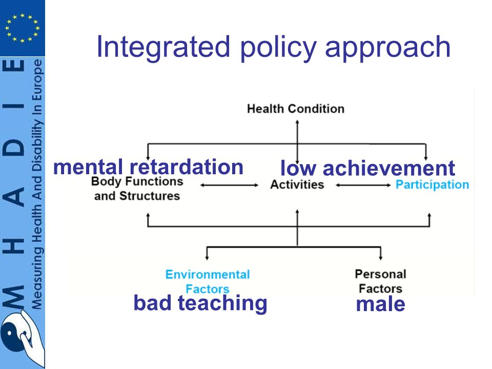 Integrated policy approach mental retardation low achievement bad teaching male