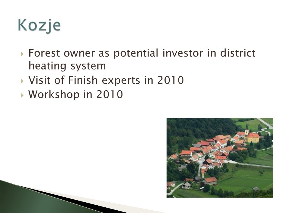 Forest owner as potential investor in district heating system Visit of Finish experts in 2010 Workshop in 2010