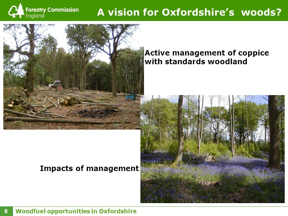 Woodfuel opportunities in Oxfordshire 6 A vision for Oxfordshires woods? Active management of coppice with standards woodland Impacts of management