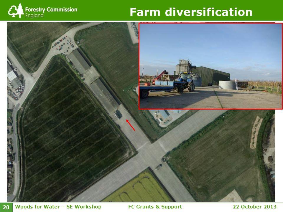 Woods for Water – SE WorkshopFC Grants & Support 22 October 2013 20 Farm diversification