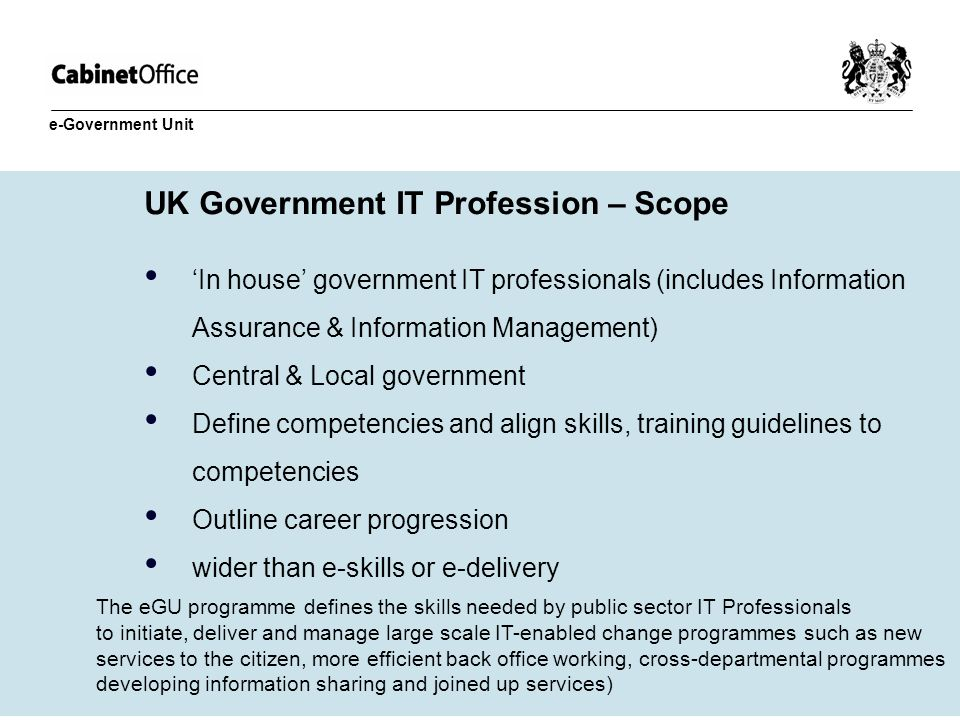 UK Government IT Profession – Scope In house government IT professionals (includes Information Assurance & Information Management) Central & Local gov