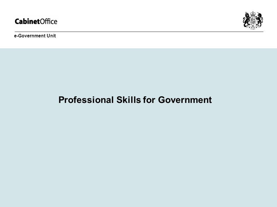 Professional Skills for Government e-Government Unit