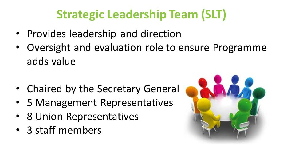 Strategic Leadership Team (SLT) Provides leadership and direction Oversight and evaluation role to ensure Programme adds value Chaired by the Secretar
