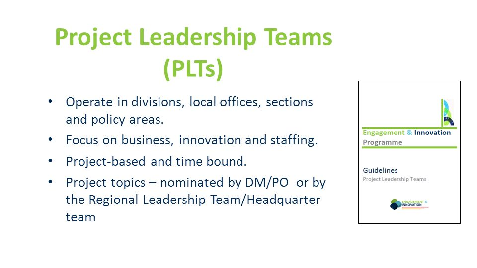 Project Leadership Teams (PLTs) Operate in divisions, local offices, sections and policy areas. Focus on business, innovation and staffing. Project-ba