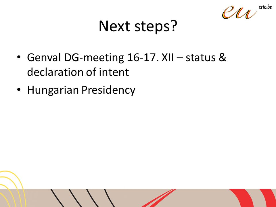 Next steps Genval DG-meeting 16-17. XII – status & declaration of intent Hungarian Presidency