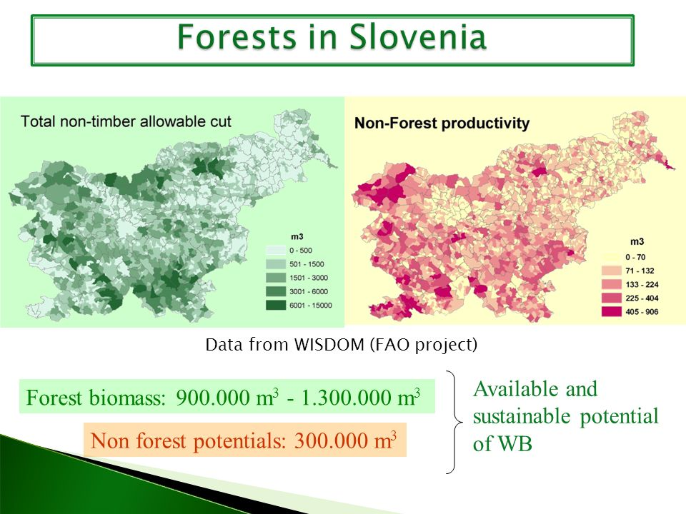Forest biomass: 900.000 m 3 - 1.300.000 m 3 Non forest potentials: 300.000 m 3 Available and sustainable potential of WB Data from WISDOM (FAO project)