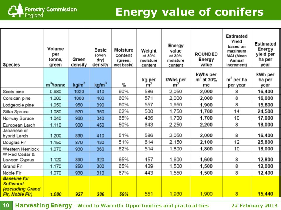 Harvesting Energy - Wood to Warmth: Opportunities and practicalities 22 February 2013 10 Energy value of conifers