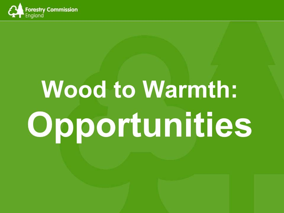 Wood to Warmth: Opportunities