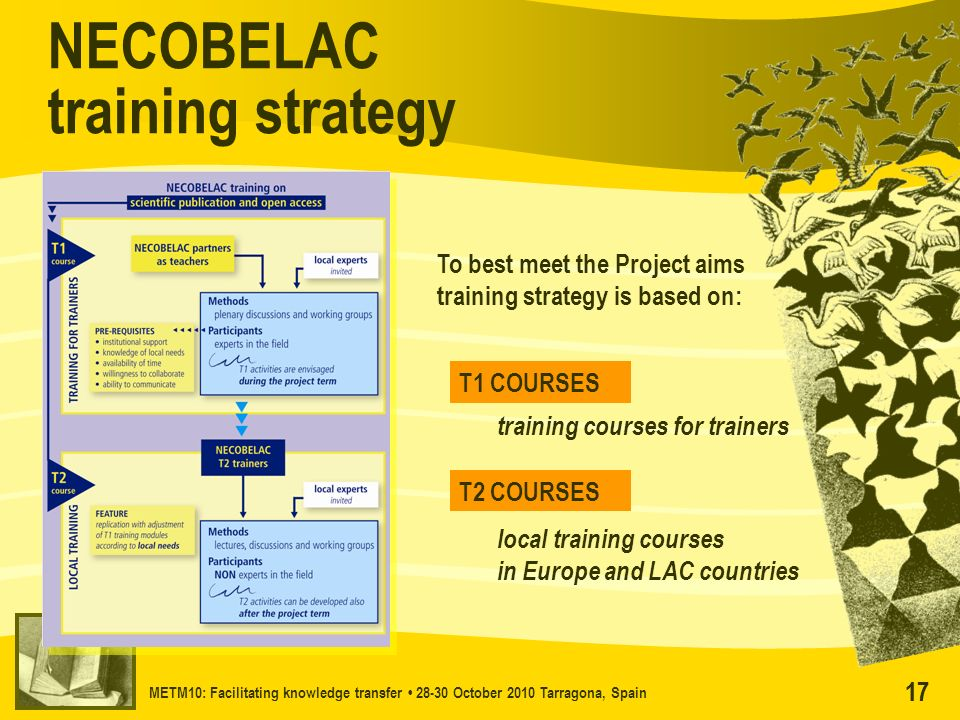 METM10: Facilitating knowledge transfer 28-30 October 2010 Tarragona, Spain 17 NECOBELAC training strategy To best meet the Project aims training stra