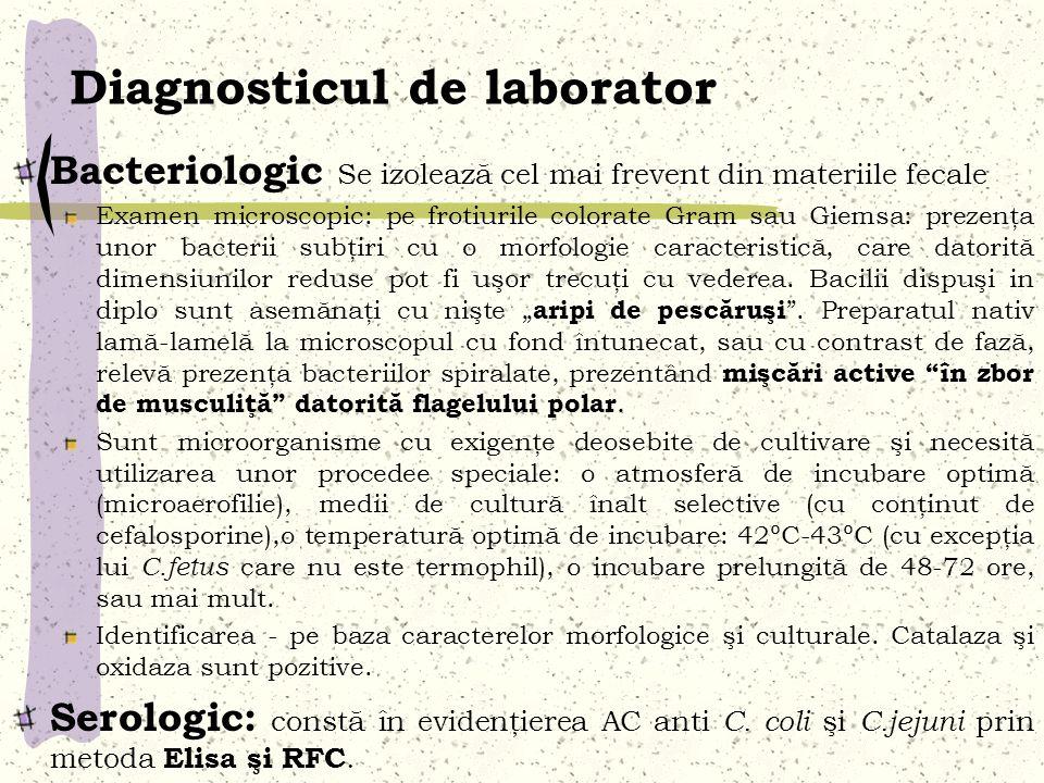 Diagnosticul de laborator Bacteriologic Se izolează cel mai frevent din materiile fecale Examen microscopic: pe frotiurile colorate Gram sau Giemsa: p