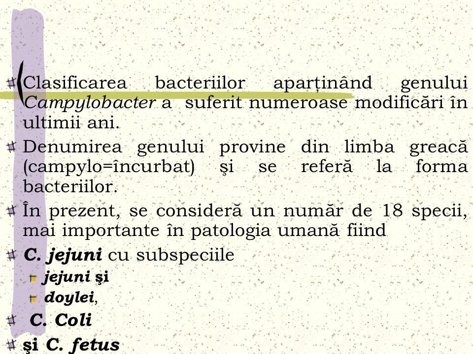 Clasificarea bacteriilor aparţinând genului Campylobacter a suferit numeroase modificări în ultimii ani. Denumirea genului provine din limba greacă (c