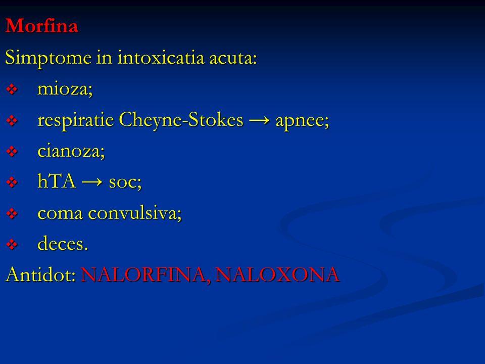 Morfina Simptome in intoxicatia acuta: mioza; mioza; respiratie Cheyne-Stokes apnee; respiratie Cheyne-Stokes apnee; cianoza; cianoza; hTA soc; hTA so