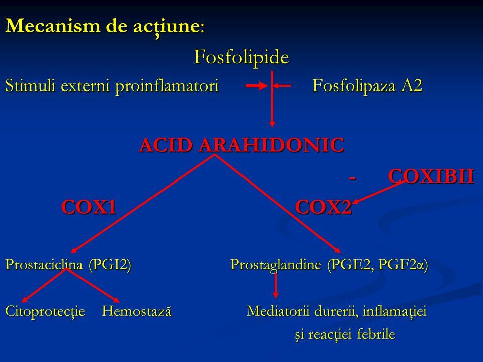 Mecanism de acţiune: Fosfolipide Stimuli externi proinflamatori Fosfolipaza A2 ACID ARAHIDONIC - COXIBII - COXIBII COX1COX2 COX1COX2 Prostaciclina (PG