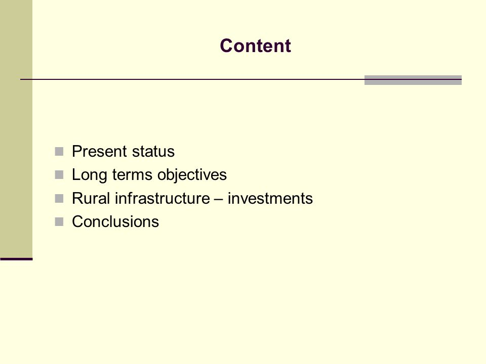 Content Present status Long terms objectives Rural infrastructure – investments Conclusions